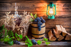 Grapes and red wine in a demijohn. On old wooden table Royalty Free Stock Image