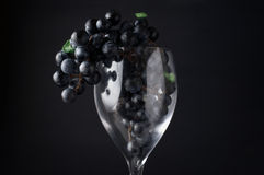 Grapes in red wine glass hanging over against dark background Stock Images
