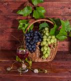 Grapes, red wine and vine Stock Images