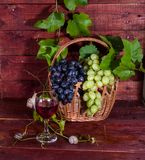 Grapes, red wine and vine Stock Photo