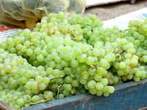 Grapes for Sale Stock Image