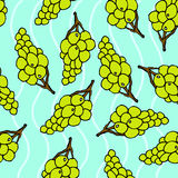 Grapes seamless pattern. Blue background. Juicy fruits background royalty free illustration