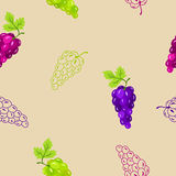 Grapes seamless pattern blue pink green illustration Royalty Free Stock Photography