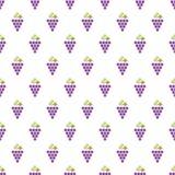 Grapes Seamless Pattern Royalty Free Stock Photos