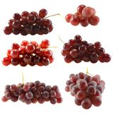 Grapes  set Stock Image