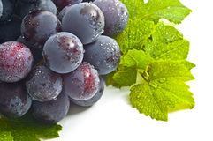 Grapes, Stock Photography