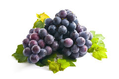 Grapes, Royalty Free Stock Photography