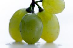 Grapes with some water drops Royalty Free Stock Photos