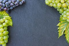 Grapes on a stone background royalty free stock image