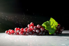 Grapes in the sun with splashes of water on a dark backgroundwith reflection Royalty Free Stock Images