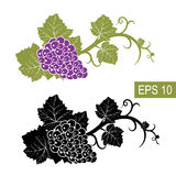 The grapes are symbols. Vector isolated signs. Isolated white background Stock Photography