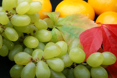 Grapes and tangerines. On a black background stock images