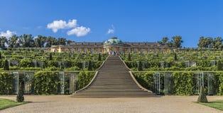 Grapes terraces and Sanssouci Palace Stock Image
