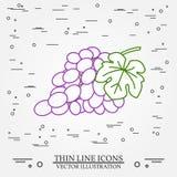 Grapes thin line design. Grapes pen Icon. stock illustration
