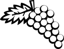 Grapes vector illustration Royalty Free Stock Photo