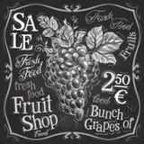 Grapes vector logo design template. fresh fruit Royalty Free Stock Photography