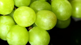 Grapes A Stock Images