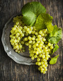 Grapes on vintage plate Stock Photos