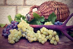 Grapes and vintage wicker bottle on the wooden table Royalty Free Stock Images