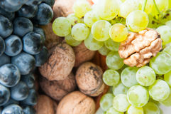Grapes and walnuts Royalty Free Stock Photography