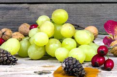 Grapes and walnuts. On an old wooden table Stock Image