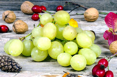Grapes and walnuts. On an old wooden table Stock Photos