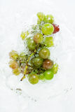 Grapes in water. Grapes cluster falling in water with drops Royalty Free Stock Images