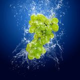 Grapes in water. Water drops around green grapes on blue background royalty free stock photography