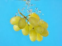 Grapes in water. A bunch of grapes being dropped into some water stock images