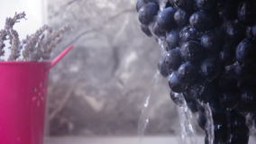 Grapes in water. Closeup view of grapes in water stock footage
