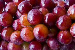 Grapes with water droplets Stock Images