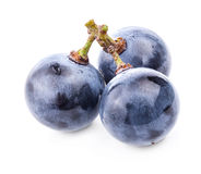 Grapes with water drops Stock Photos
