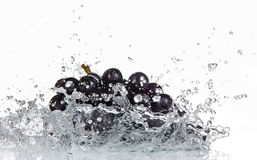Grapes with water splash Royalty Free Stock Photography