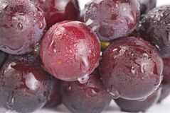 Grapes with waterdrops, fresh fruit. Stock Image