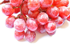 Grapes  on white. Fresh grapes  on white background Stock Photos
