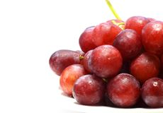 Grapes on white background Stock Photography