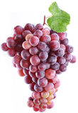Grapes on a white background. Royalty Free Stock Photography