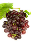 Grapes. On a white background Royalty Free Stock Photo