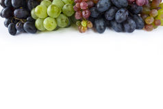Grapes on white background. Royalty Free Stock Photography