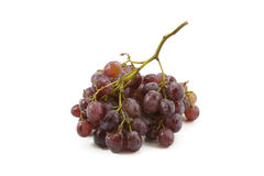 Grapes on a white background Royalty Free Stock Images