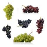 Grapes on white background - studio shot stock image