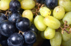 Grapes white and blue. White and blue grapes background Royalty Free Stock Photo