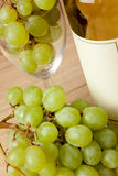 Grapes and white wine Stock Image