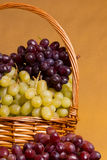 Grapes in wicker basket Royalty Free Stock Image