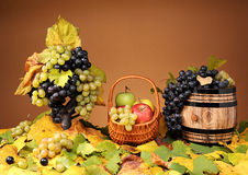Grapes in a wicker basket and apples Stock Photos