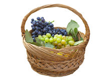 Grapes in wicker basket isolated over white Stock Photos
