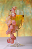 Grapes and wine Stock Photos