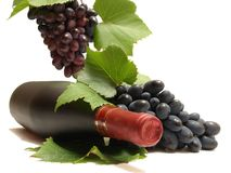 Grapes wine Stock Photos