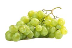 Grapes wine. Isolated white background Stock Photography