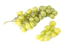Grapes wine Stock Photography